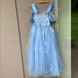 Cinderella costume!